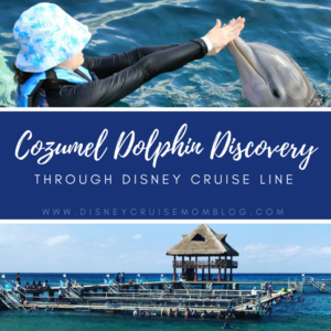 Excursion Review: Cozumel Dolphin Discovery Through Disney Cruise Line
